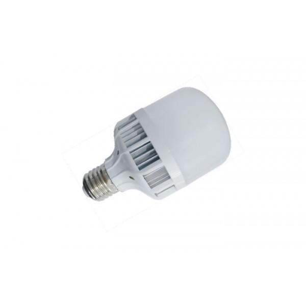 Birdcage Bulb 5W