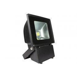Backpack Flood Light-Black 100W