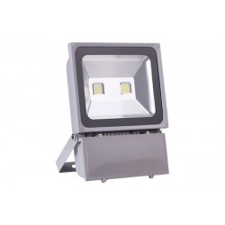 Backpack Flood Light-Grey 100W
