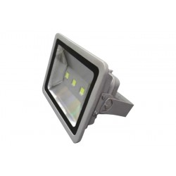 Backpack Flood Light-Grey 150W